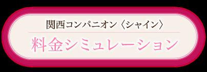 関西コンパニオン(シャイン)料金シミュレーション